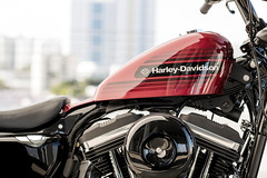 Harley-Davidson XL 1200 X Sportster Forty Eight Special 2018 - 13