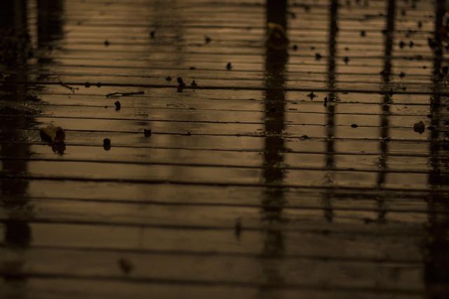 Feb 24 - Raining at night