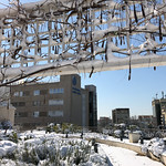 © FSL - Fondazione Santa Lucia IRCCS sotto la neve - 01