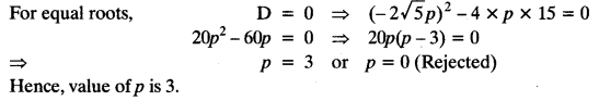 Quadratic Equations Chapter Wise Important Questions Class 10 Mathematics 30