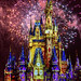 <p><a href=&quot;http://www.flickr.com/people/amesis/&quot;>amesis</a> posted a photo:</p>&#xA;&#xA;<p><a href=&quot;http://www.flickr.com/photos/amesis/26606864608/&quot; title=&quot;The happiest place on earth!&quot;><img src=&quot;http://farm5.staticflickr.com/4761/26606864608_31947b342f_m.jpg&quot; width=&quot;160&quot; height=&quot;240&quot; alt=&quot;The happiest place on earth!&quot; /></a></p>&#xA;&#xA;