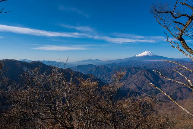 左奥に箱根の山々