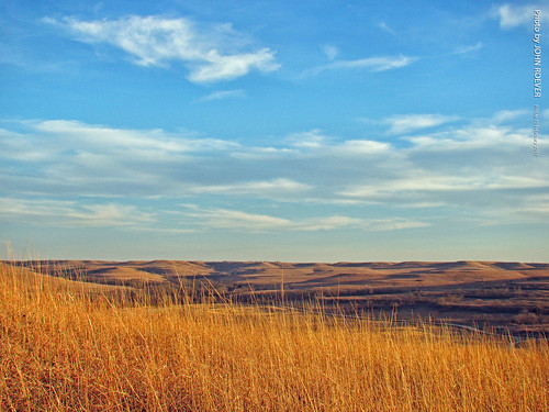 kansas rileycounty prairie tallgrassprairie konzaprairie nature naturetrail flinthills bluesky blueskies grasslands landscape afternoon february 2017 february2017 usa