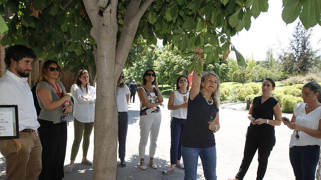 alumniUANDES y Cultura Corporativa celebran a los egresados que trabajan en la Universidad