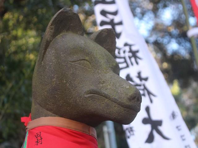 syozokuinari046