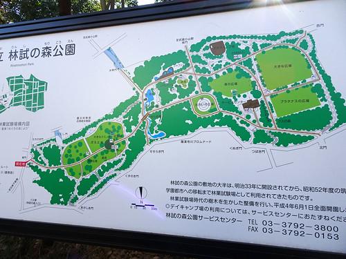 林試の森公園 地図