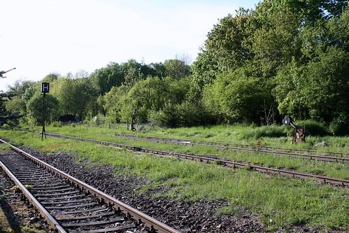 Bahnhofsgleise 1-3 in Dingelstädt