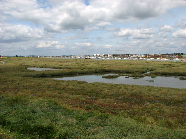 Marshes at Point Clear
