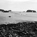 Jenner coast 7x17