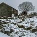 Marsden Snow - Derelict Barn