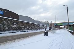 Snow Day in Glasgow (31)