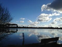 Lacs landais (40 - France)