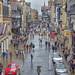 Chester in the rain _SP26309