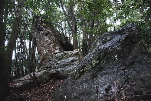 巌の社/岩やしろ/石井神社旧跡/高水上命形石