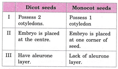 cbse-class-10-science-practical-skills-dicot-seed-5