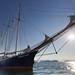 Rembrandt van Rijn, Greenland, June_Rolf Stange-Oceanwide Expeditions