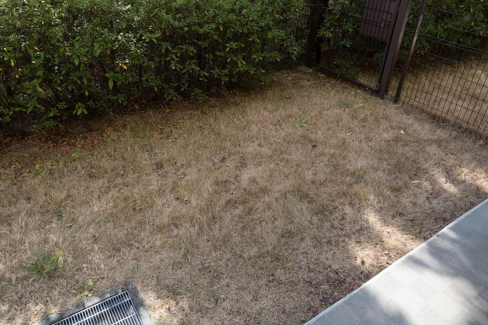 家庭用電動草刈機-6