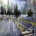 Snow Field by Tim Noonan