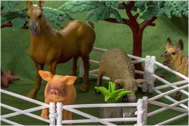Animal Farm - My Favourite Novel (Fiction).