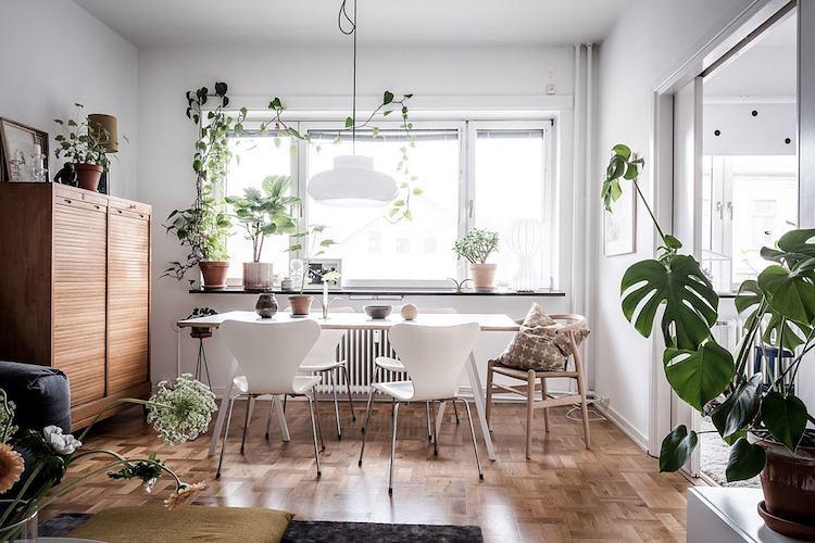 scandinavian style plants apartamento sueco