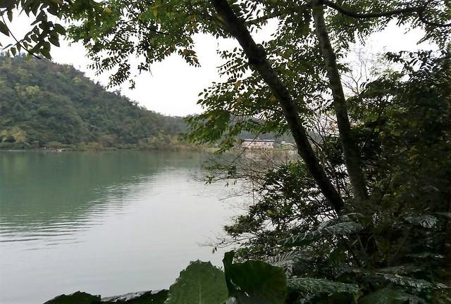 梅花湖 (15)