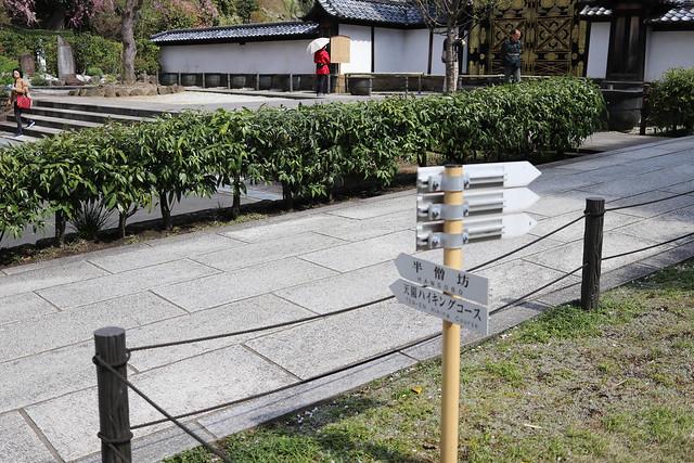 20170415_鎌倉アルプス_0106.jpg