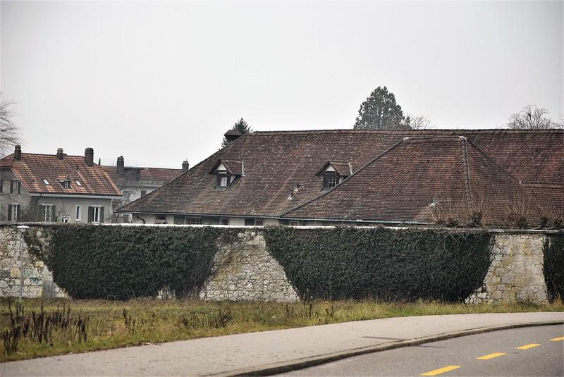 Road to Langendorf 15.01 (9)