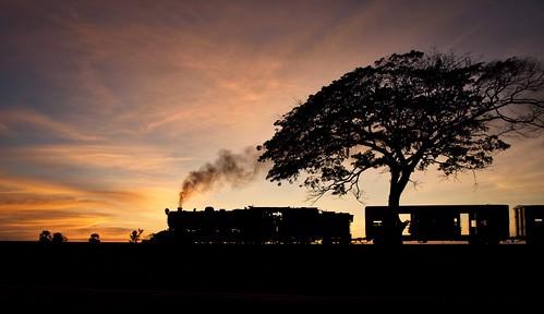 burma railways metre gauge yd 282 967 asia railway railroad rail train sunset steam engine locomotive myanmar tree gassteam farrail trains narrow zinkyaik mon state january 2018 theinzeik