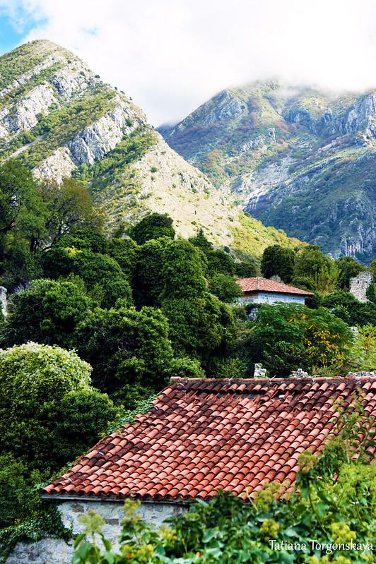 Черепичные крыши Старого Бара в окружении зелени