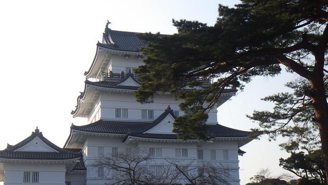 Odawara Castle 「小田原城」