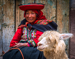 old woman with Alpaca