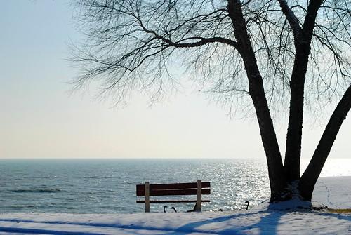 wisconsin wi midwest unitedstates usa unitedstatesofamerica sky lakemichigan lake water bench tree shoreline snow winter greatlakes racine racinewi racinewisconsin