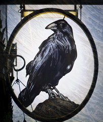 The Raven Textured