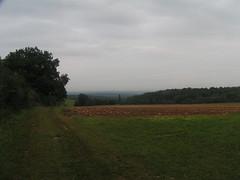 20070903 13029 0710 Jakobus Wiese Zaun Bäume Weg Feld