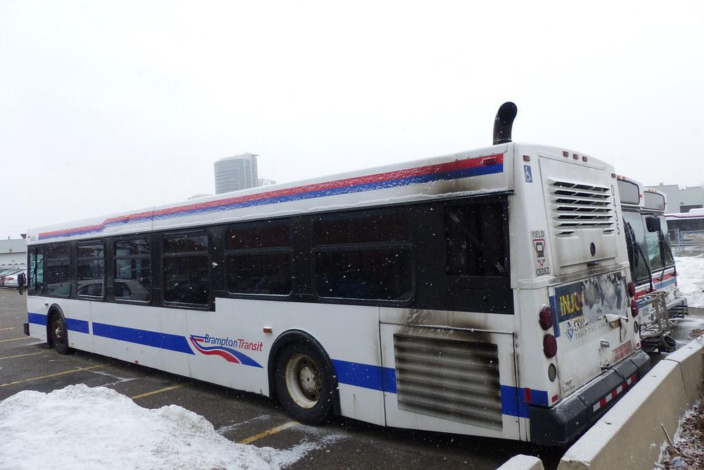 Brampton Transit #0435, 0315 & 0205
