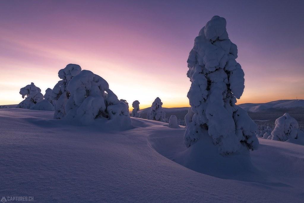 Dawn - Lapland