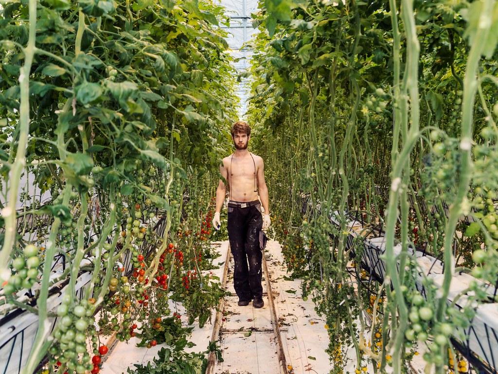 hunger-solution-urban-farmer.adapt.1900.1