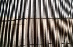 wall-reed