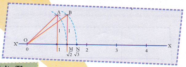 cbse-class-9-maths-lab-manual-an-irrational-number-3