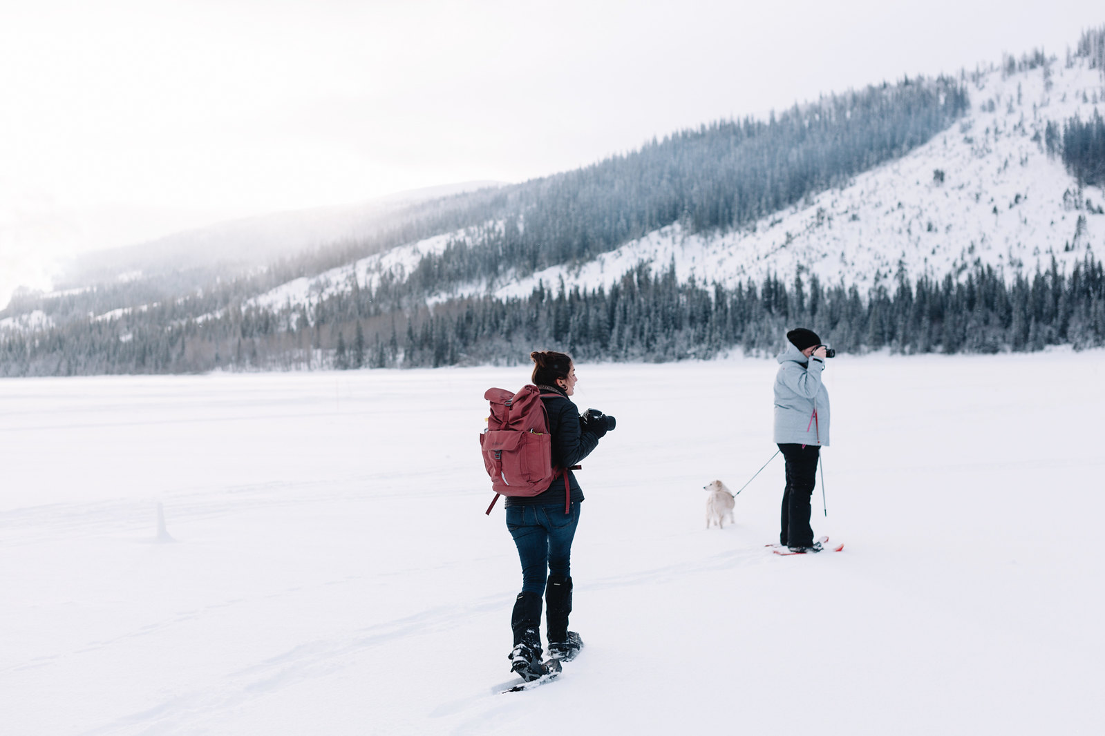 Snöskovandring