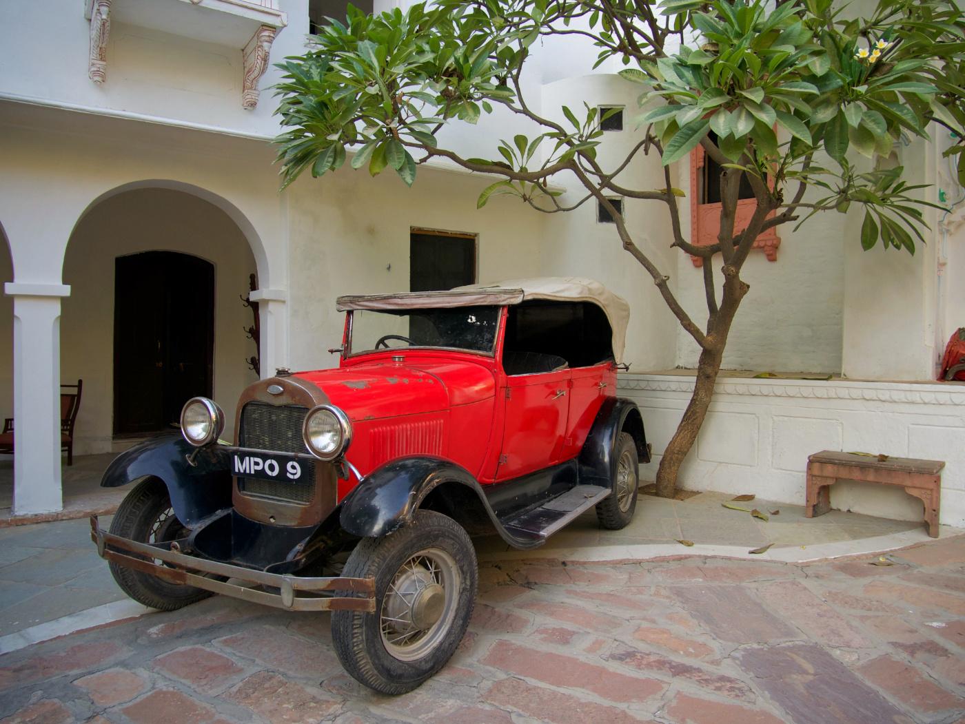 671-India-Jojowar