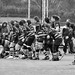 rugby-873