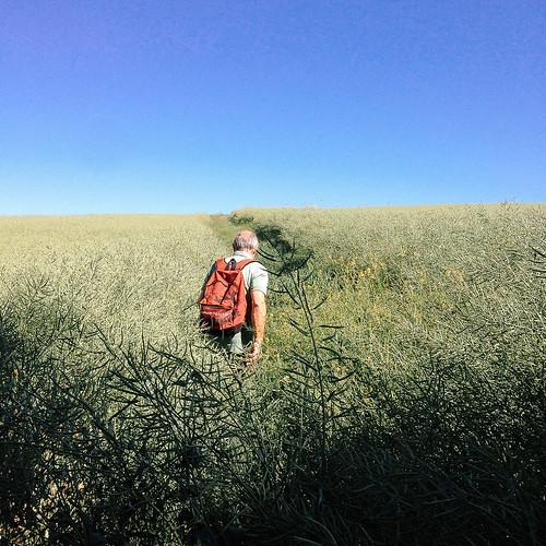 2017, une année de voyage en photos