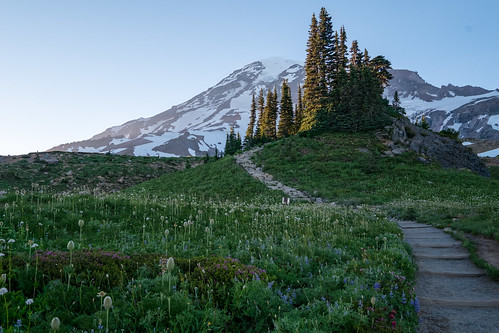 Alta Vista Trail