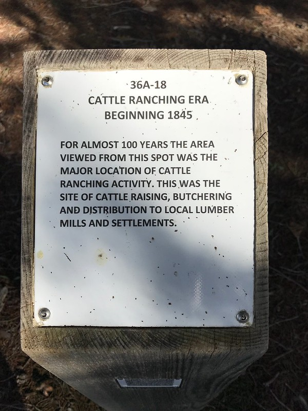 Cattle Ranching Era Beginning 1845