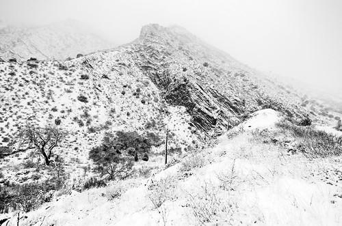 winter blackandwhite snow canyon