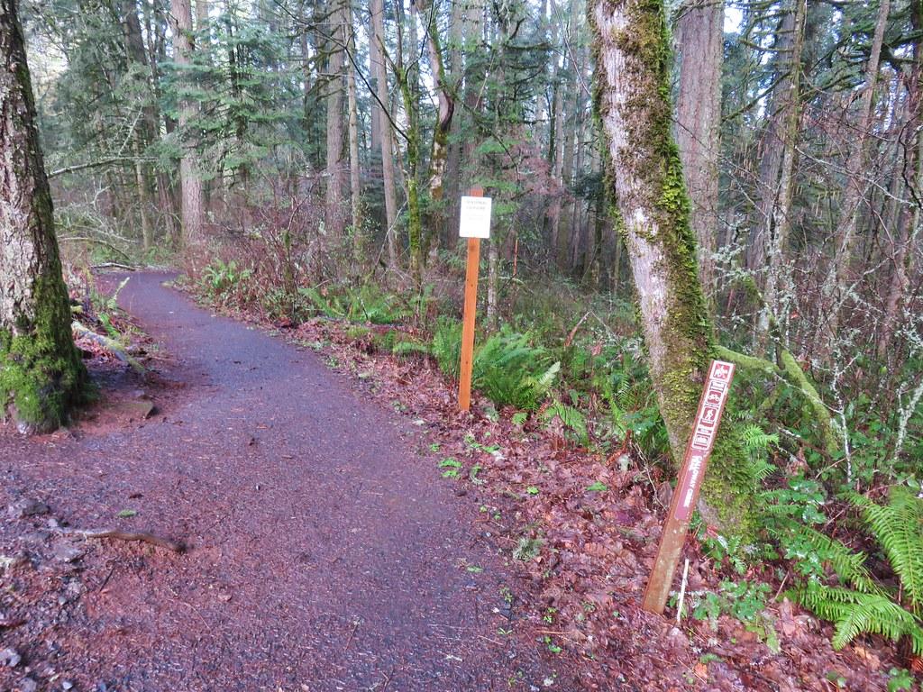 Calloway Creek Trail