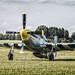 "North American P-51D Mustang ""Louisiana Kid"""