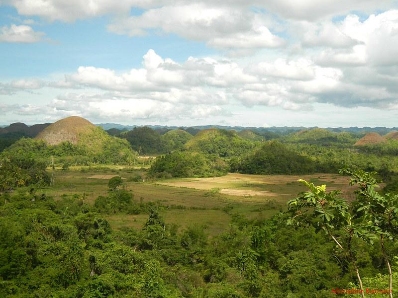 Bohol Inland Tour