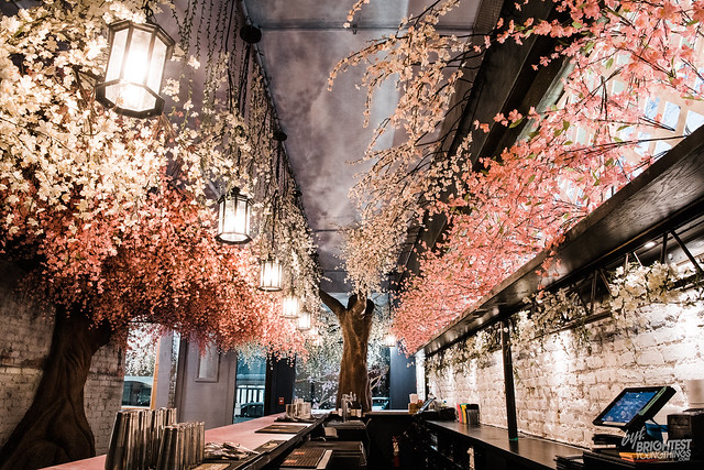 Cherry Blossom PUB-8